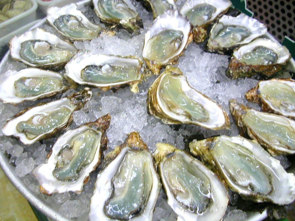 Oyster20 Oyster Eating Salt